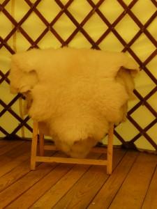 peaux lainées d'agneaux